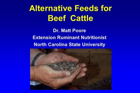 Alternative Feeds for Beef Cattle Dr. Matt Poore Extension Ruminant Nutritionist North Carolina State University.