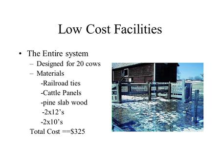 Low Cost Facilities The Entire system –Designed for 20 cows –Materials -Railroad ties -Cattle Panels -pine slab wood -2x12's -2x10's Total Cost ==$325.