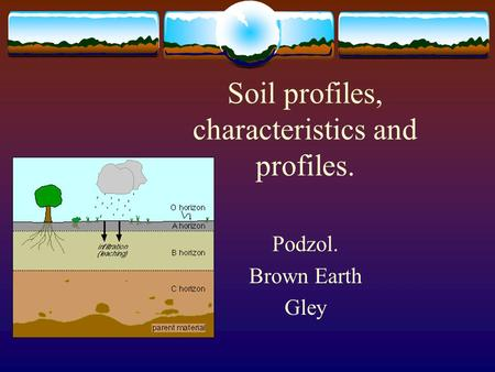 Soil profiles, characteristics and profiles. Podzol. Brown Earth Gley.
