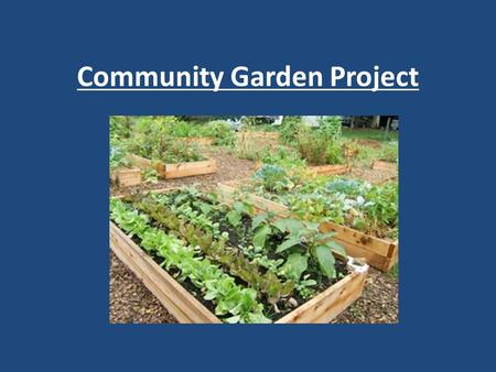 Community Garden Project. Primary Goals Service-learning & class content integration Stewardship & Cross Grade level participation Donate excess food…