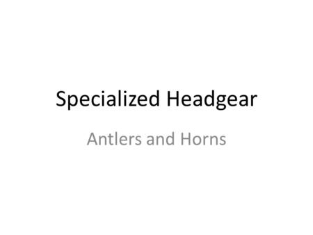 Specialized Headgear Antlers and Horns. Public Demand The demand for antlers and horns of many different animals has fueled illegal hunting and trafficking.