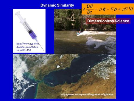 Dynamic Similarity  diabetes.com/Article s.asp?ID=150  Dimensionless Science.