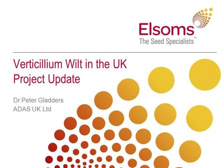 Verticillium Wilt in the UK Project Update Dr Peter Gladders ADAS UK Ltd.