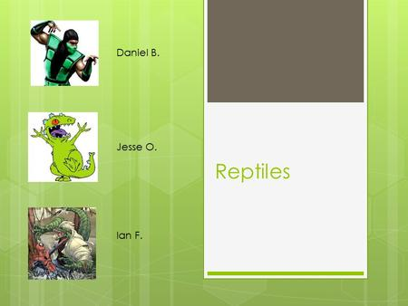 Reptiles Daniel B. Ian F. Jesse O.. General Characteristics  Dry skin with epidermal scales  Skull with one point of articulation with the vertebral.