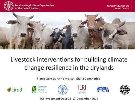 Livestock interventions for building climate change resilience in the drylands TCI Investment Days 16-17 December 2014 Pierre Gerber, Anne Mottet, Giulia.