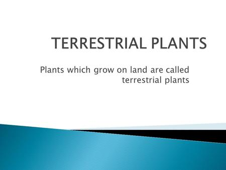 Plants which grow on land are called terrestrial plants