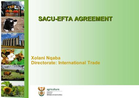 SACU-EFTA AGREEMENT Xolani Nqaba Directorate: International Trade.