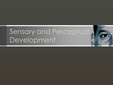Sensory and Perceptual Development. Sensation: Detection of stimuli by sensory means and transmission of this information to the brain. Perception: Interpretation.