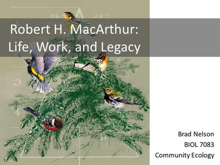Brad Nelson BIOL 7083 Community Ecology Robert H. MacArthur: Life, Work, and Legacy.