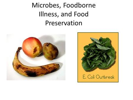 Microbes, Foodborne Illness, and Food Preservation.