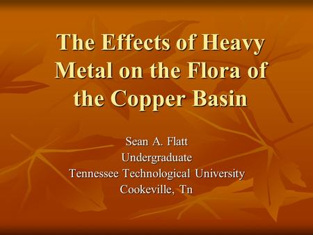 The Effects of Heavy Metal on the Flora of the Copper Basin Sean A. Flatt Undergraduate Tennessee Technological University Cookeville, Tn.