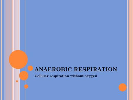 ANAEROBIC RESPIRATION Cellular respiration without oxygen.