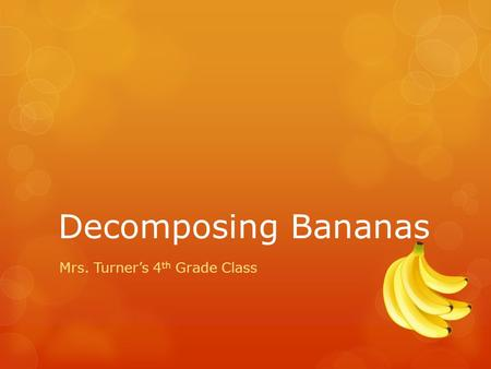 Decomposing Bananas Mrs. Turner's 4 th Grade Class.