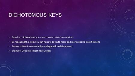 DICHOTOMOUS KEYS Based on dichotomies, you must choose one of two options By repeating this step, you can narrow down to more and more specific classifications.