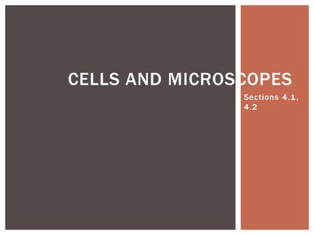 Sections 4.1, 4.2 CELLS AND MICROSCOPES.  Microscopes allow us to identify organisms that cause food to spoil and cause disease.  1665 Robert Hooke-
