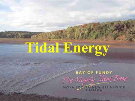 Tidal Energy. Energy from the moon Tides generated by the combination of the moon and sun's gravitational forces Greatest affect in spring when moon and.
