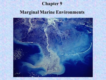 Marginal Marine Environments