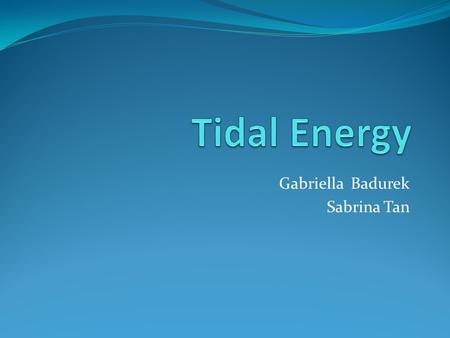 Gabriella Badurek Sabrina Tan. Tides vs. Waves Alternate rising and falling of the sea Occurs twice in each lunar day Controlled by the moon Kinetic energy.
