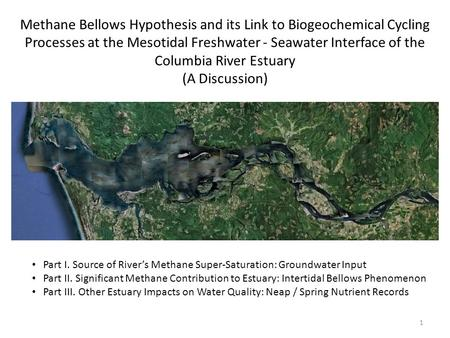Methane Bellows Hypothesis and its Link to Biogeochemical Cycling Processes at the Mesotidal Freshwater - Seawater Interface of the Columbia River Estuary.