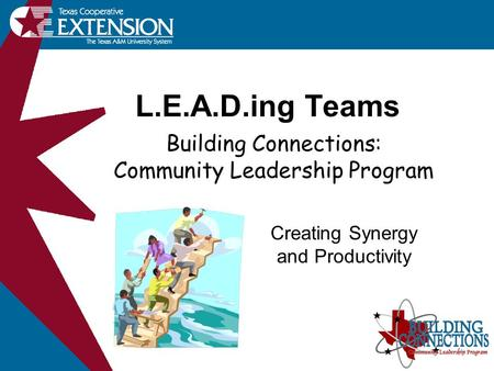 L.E.A.D.ing Teams Creating Synergy and Productivity Building Connections: Community Leadership Program.