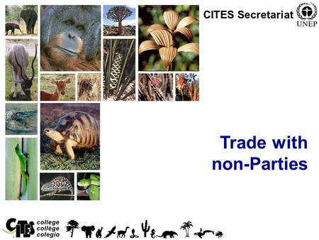 1 Trade with non-Parties CITES Secretariat. 2 Trade with non-Parties Article X, Trade with States not Party to the Convention, states: –Where export or.