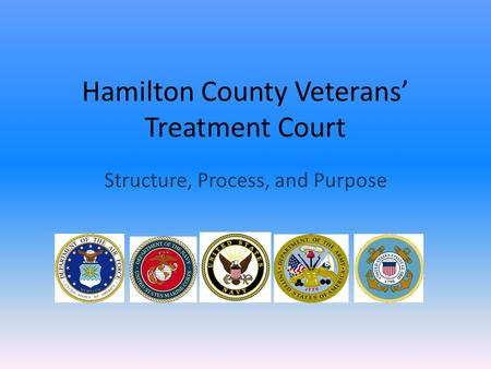 Hamilton County Veterans' Treatment Court Structure, Process, and Purpose.