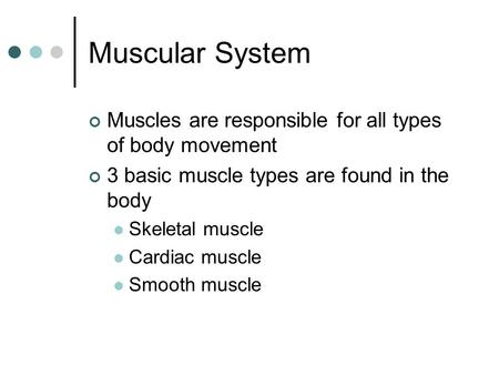 Muscular System Muscles are responsible for all types of body movement