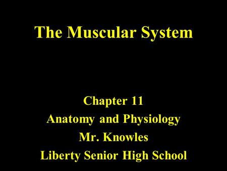 The Muscular System Chapter 11 Anatomy and Physiology Mr. Knowles Liberty Senior High School.