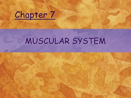 MUSCULAR SYSTEM Chapter 7. © 2004 Delmar Learning, a Division of Thomson Learning, Inc. TYPES OF MUSCLES Skeletal muscles Smooth muscle Cardiac muscle.
