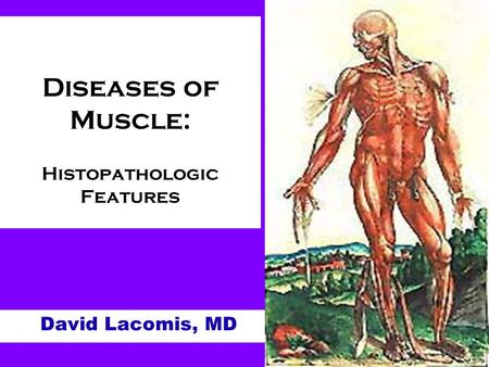 Diseases of Muscle: Histopathologic Features