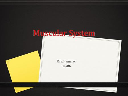 Muscular System Mrs. Hammac Health.