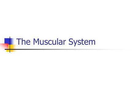 "The Muscular System. MUSCULAR SYSTEM Types of Muscle Tissue: Skeletal, Smooth, and Cardiac Skeletal, aka ""striated"" voluntary – attached to bones and."