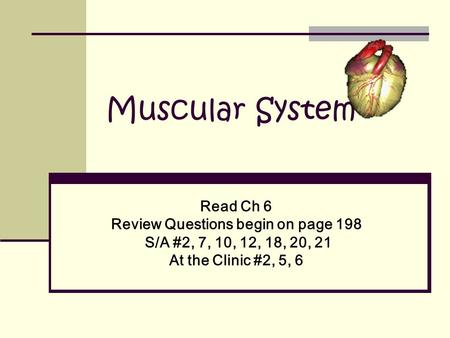 Muscular System Read Ch 6 Review Questions begin on page 198 S/A #2, 7, 10, 12, 18, 20, 21 At the Clinic #2, 5, 6.