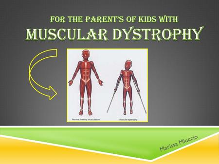  Muscular dystrophy (MD) is a genetic disorder that weakens the muscles of the body  People with MD have incorrect /missing information in their genes.