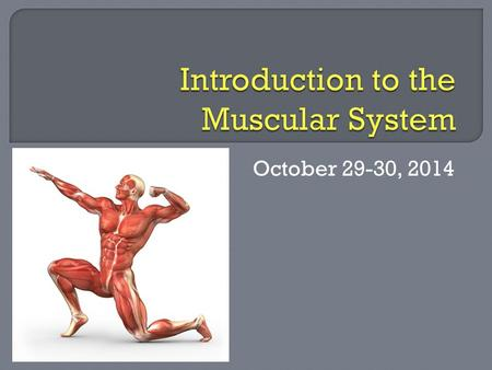 October 29-30, 2014. What are the functions of muscles?