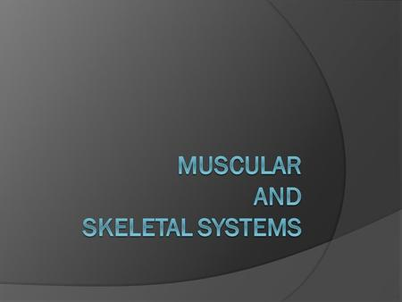 Muscular System…  The body has over 600 muscles.  They are soft tissues.  Tiny jolts of electricity called electrical impulses travel through the nerves.