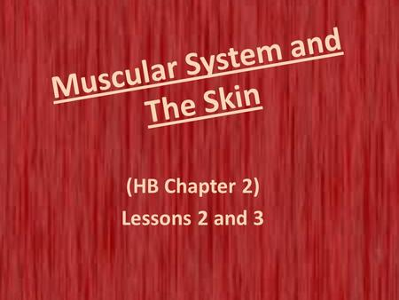 Muscular System and The Skin (HB Chapter 2) Lessons 2 and 3.