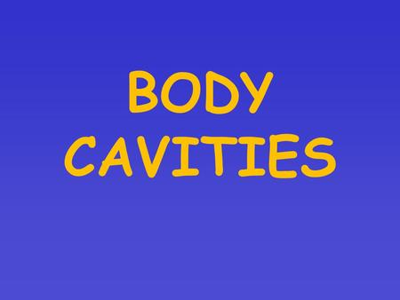 BODY CAVITIES. Spaces within the body containing vital organs Two MAIN Cavities –Dorsal – (posterior) on the back side of the body  Cranial – holds the.