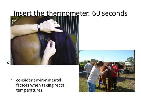 Insert the thermometer. 60 seconds consider environmental factors when taking rectal temperatures.