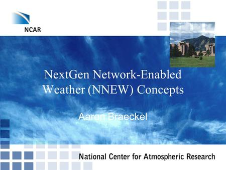NextGen Network-Enabled Weather (NNEW) Concepts Aaron Braeckel.