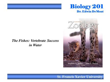 Biology 201 Dr. Edwin DeMont St. Francis Xavier University The Fishes: Vertebrate Success in Water.