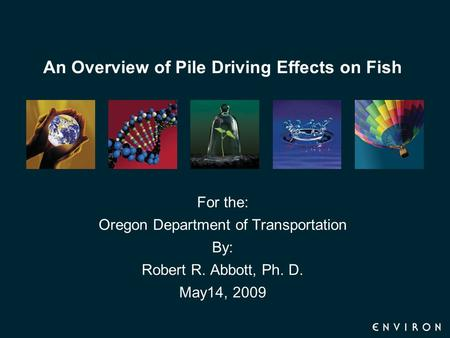 An Overview of Pile Driving Effects on Fish For the: Oregon Department of Transportation By: Robert R. Abbott, Ph. D. May14, 2009.