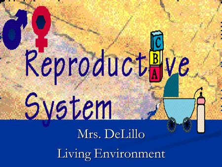 Mrs. DeLillo Living Environment
