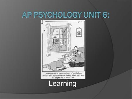 Learning is a relatively permanent change in behavior essay