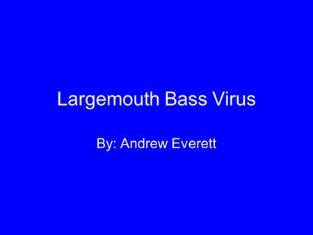 Largemouth Bass Virus By: Andrew Everett. Largemouth Bass Micropterus salmoides.