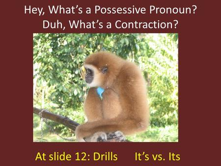 Hey, What's a Possessive Pronoun? Duh, What's a Contraction? At slide 12: Drills It's vs. Its.
