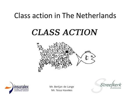 Class action in The Netherlands Mr. Bertjan de Lange Mr. Tessa Havekes.