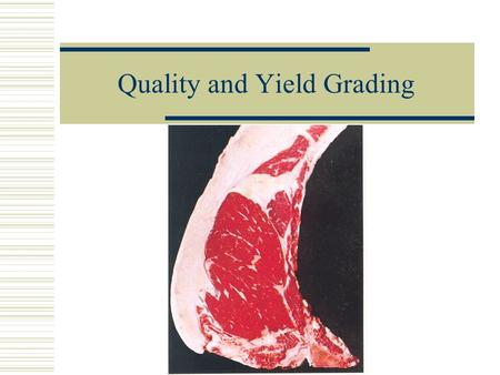 Quality and Yield Grading Beef Quality Grading  Used to predict the palatability (taste) of the meat.  Determined by the age and marbling (intramuscular.