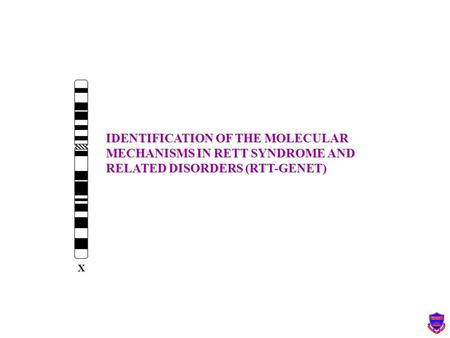 IDENTIFICATION OF THE MOLECULAR MECHANISMS IN RETT SYNDROME AND RELATED DISORDERS (RTT-GENET) X.