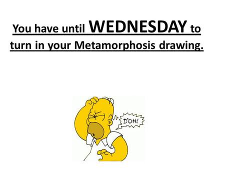 You have until WEDNESDAY to turn in your Metamorphosis drawing.